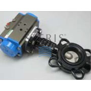 "Image for BUTTERFLY VALVE 2"" SS/EPD from Service Parts - US"