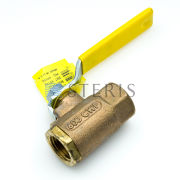 STERIS Product Number P093902921 1/2 IN. NPT BALL VALVE