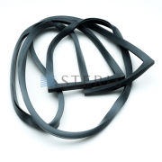 STERIS Product Number P117910229 GASKET  WINDOW