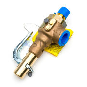 STERIS Product Number P150828473 VALVE  SAFETY (STEAM)