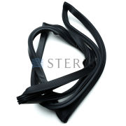 STERIS Product Number P451966091 GASKET