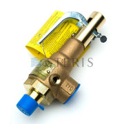 STERIS Product Number P764323459 VALVE  SAFETY 1/2 IN.