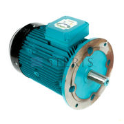 STERIS Product Number P86035031F MOTOR ELECTRIC 208/60/6.3