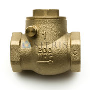 STERIS Product Number P910006018 CHECK VALVE 1 IN. NPT